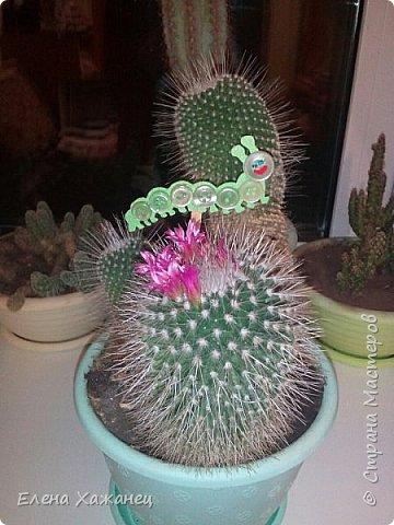 В цветочный горшочек (вторая жизнь пуговиц) фото 1