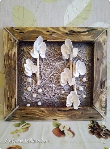 Брус, иголки еловые, ракушки, салфетки, ветка Ореховая,краски акриловые  фото 1
