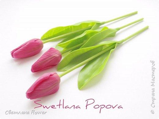 Весна!!! Тюльпаны из холодного фарфора фото 2