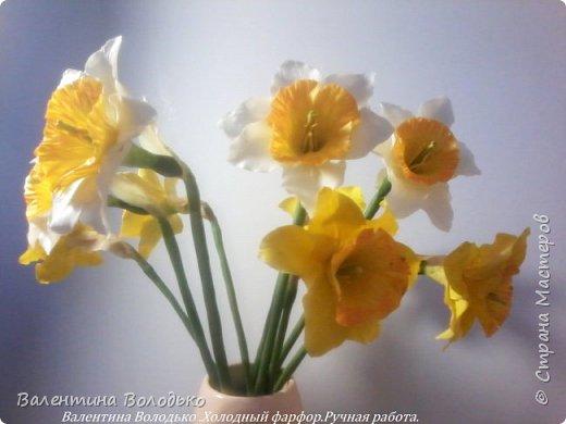 Добрый день мастера и мастерицы!!!!Сегодня я к вам с весенними цветами нарциссами.Очень надеюсь,что и весна нас побалует теплой погодой. фото 3