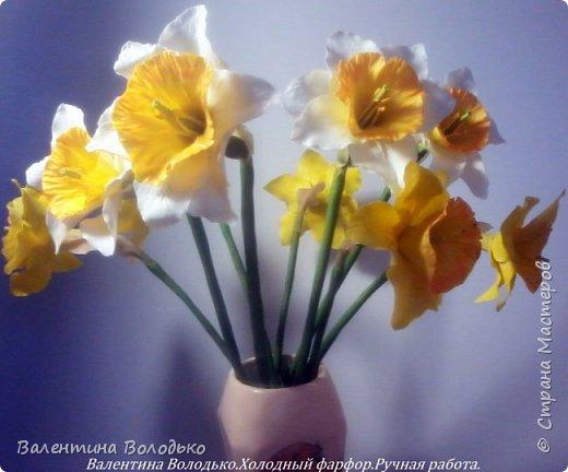 Добрый день мастера и мастерицы!!!!Сегодня я к вам с весенними цветами нарциссами.Очень надеюсь,что и весна нас побалует теплой погодой. фото 4
