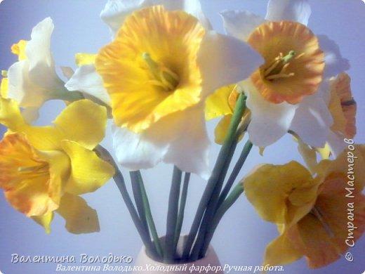 Добрый день мастера и мастерицы!!!!Сегодня я к вам с весенними цветами нарциссами.Очень надеюсь,что и весна нас побалует теплой погодой. фото 1
