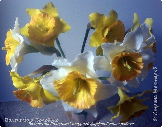 Добрый день мастера и мастерицы!!!!Сегодня я к вам с весенними цветами нарциссами.Очень надеюсь,что и весна нас побалует теплой погодой. фото 6