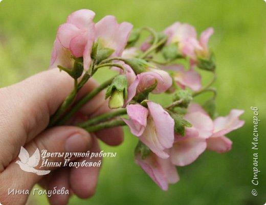 Приветствую всех жителей страны! Слепились у меня  на заказ два  букетика полевых цветов. Немного об истории этого заказа. Одна чудесная женщина попросила меня слепить два букетика из любимых полевых цветов для своей старенькой мамы. Ее мама выращивала их в своем саду. Я получила список любимых цветочков  и просьбу выполнить два букета в разных цветовых гаммах. Скажу честно,я долго собиралась с духом,чтобы начать эту работу. Изучила много фото полевых цветов и мастер- классов. И так,как мне очень хотелось порадовать пожилую женщину, я взялась за этот заказ и постаралась вложить в него всю теплоту и любовь,какую я испытываю к своим мамочке и бабушке,зная,что эти букетики призваны пробудить добрые воспоминания и переживания! И надо сказать,что я сама получила колоссальное удовольствия,создавая и собирая эти букетики. Я слепила практически все цветочки из списка,кроме одного) Вот такой у меня случился опыт:) фото 7