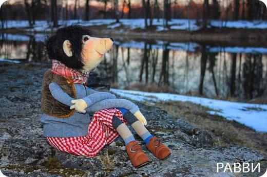 Девочки, хочу вас познакомить с новой текстильной куклой- Мышь дворцовый Вениамин. Тельце, мордочка и лапки сшиты из бархата, прическа натуральная нутрия, одежда из достаточно винтажной ткани, жилетик из каракуля и ботинки из натуральной замши.подошва пробковая. фото 3