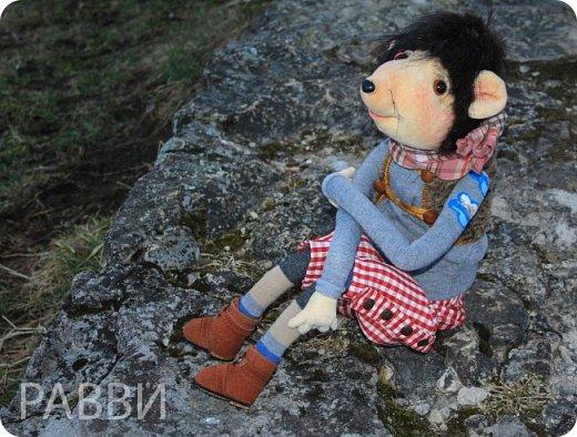 Девочки, хочу вас познакомить с новой текстильной куклой- Мышь дворцовый Вениамин. Тельце, мордочка и лапки сшиты из бархата, прическа натуральная нутрия, одежда из достаточно винтажной ткани, жилетик из каракуля и ботинки из натуральной замши.подошва пробковая. фото 4