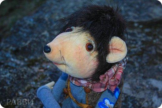 Девочки, хочу вас познакомить с новой текстильной куклой- Мышь дворцовый Вениамин. Тельце, мордочка и лапки сшиты из бархата, прическа натуральная нутрия, одежда из достаточно винтажной ткани, жилетик из каракуля и ботинки из натуральной замши.подошва пробковая. фото 5