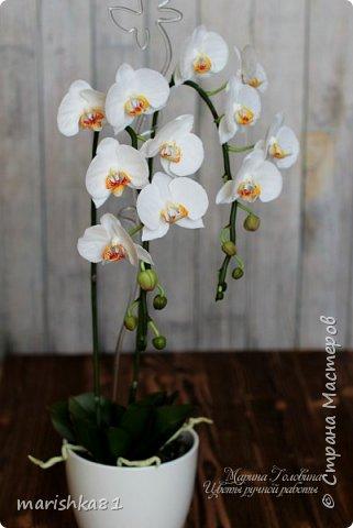 Орхидеи из флористической полимерной глины фото 2