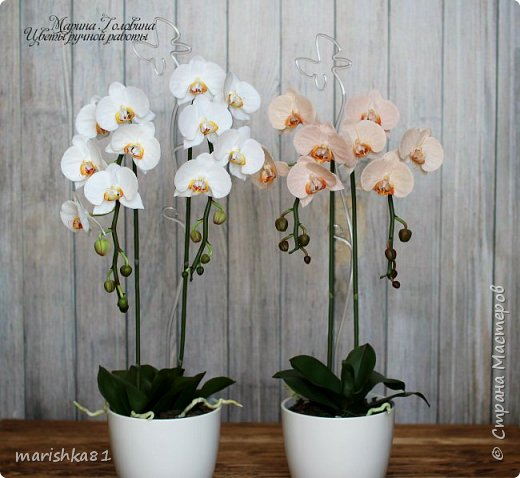 Орхидеи из флористической полимерной глины фото 1