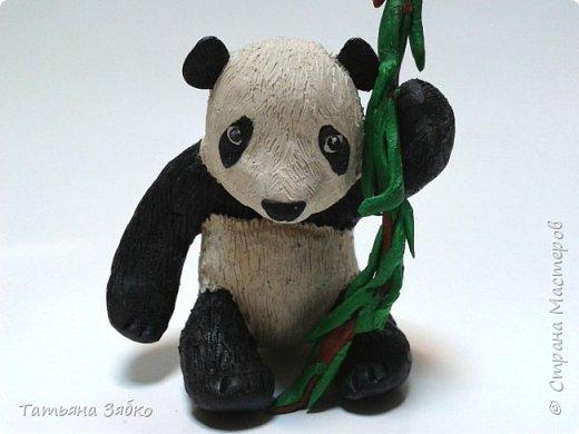 Привет всем Мастерам и Мастерицам! Недавно вспоминала свое детство и то, как я с удовольствием лепила разных зверюшек. В 6 лет  у меня был  целый зоопарк. И моя ностальгия воплотилась в несколько маленьких симпатичных фигурок. Первая- это медвежонок панда со стеблем бамбука. фото 1