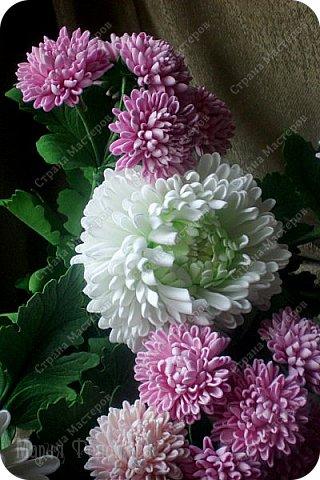 Доброго времени суток,милые рукодельницы и рукодельники!Сегодня завершила огромную работу - букет хризантем.В букете 5 белых шаровидных хризантем и 4 ветки кустовых хризантем.В каждой веточке по 5 цветков.Букет получился большой,роскошный.Надеюсь,что скоро будет радовать свою новую хозяйку - любительницу хризантем. фото 2