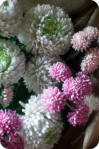 Доброго времени суток,милые рукодельницы и рукодельники!Сегодня завершила огромную работу - букет хризантем.В букете 5 белых шаровидных хризантем и 4 ветки кустовых хризантем.В каждой веточке по 5 цветков.Букет получился большой,роскошный.Надеюсь,что скоро будет радовать свою новую хозяйку - любительницу хризантем. фото 11