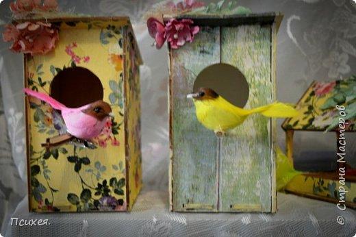 Приветствую Страну Мастеров!!!Эти подарки готовила к Пасхе.Конечно,красила и яйца разными хитроумными способами по урокам здешних Мастериц и другие поделки были,но вот фотографировать вечно забываем... Заготовки скворечника и птички из Фикс Прайса. фото 2