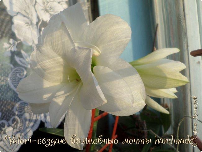 Дорогие ДРУЗЬЯ, Доброго всем Вам времени!!! Так давно не показывала Вам свои работы, были разные трудности, но теперь всё позади и я постараюсь исправить ситуацию)) Отдельная моя благодарность Наташеньке Плиско(http://stranamasterov.ru/user/35135)-спасибо тебе, моя хорошая, за помощь, без тебя я не смогла бы создать такой длинный пост, а выкладывать отдельно просто не представляется возможности.  Творила я не так уж много, в основном однотипные заказы, но несколько новых работ всё таки имеется)).  И так, начинаем: Это ключница со слонами, создала её отталкиваясь от формы заготовки, лежала удлинённая узкая фанерка: фото 114