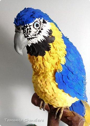 Птицы в технике фом-арт фото 23