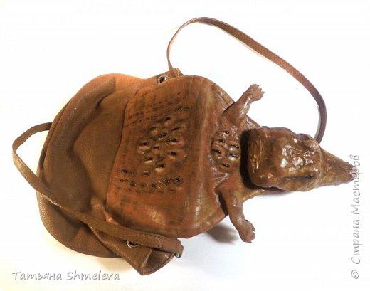 Животные и насекомые из фома фото 36