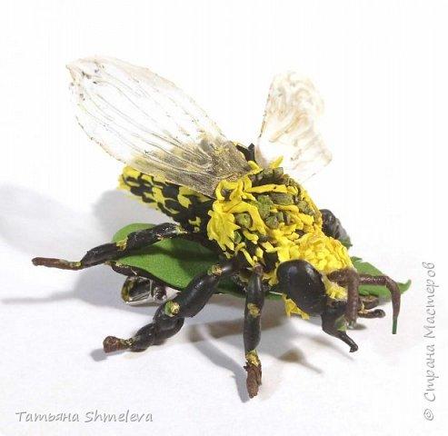 Животные и насекомые из фома фото 20