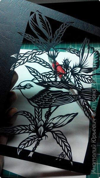 """Всем добрый день! Вашему вниманию новая открытка. К сожалению не нашёл названия этой австралийской птички (если кто подскажет, буду рад). Эскиз выполнен по цветной работе австралийской художницы Deidre Hunt. Изменён и """"доработан"""" под """"вырезалку"""". Размер 12х16см. фото 2"""