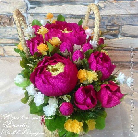 Пионы так великолепны, Роскошны, трепетны, эффектны. Их завезли к нам из Китая, Они растут всех восхищая:   Пионы прочно в сад вошли, Везде поклонников нашли, Цветут роскошные кусты, Прекрасны нежные цветы!  автор: Елена Телушкина  фото 6