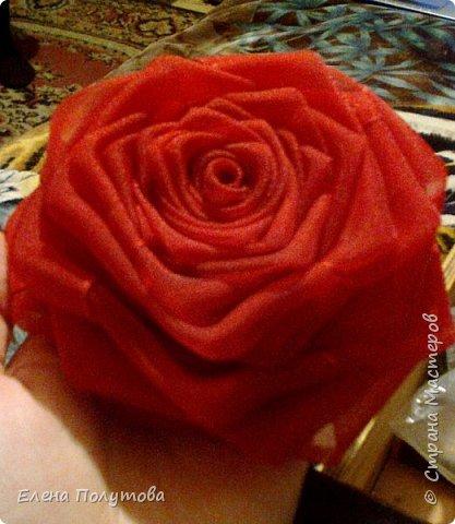 Роза из капроновой ленты №1 фото 1