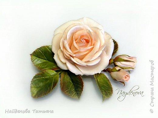 Весна в цвету )))))))) фото 2