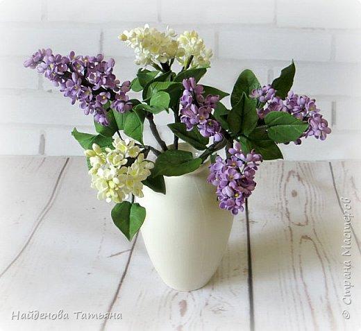 Весна в цвету )))))))) фото 7
