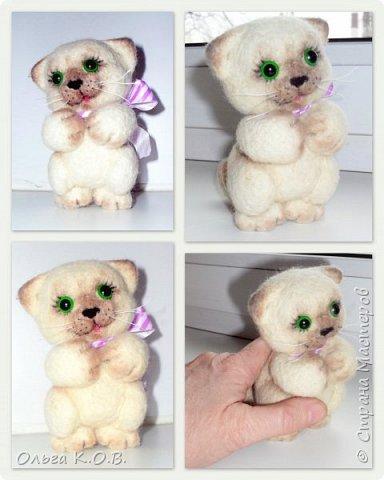 Котеночек фото 5