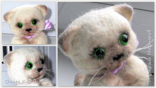 Котеночек фото 6