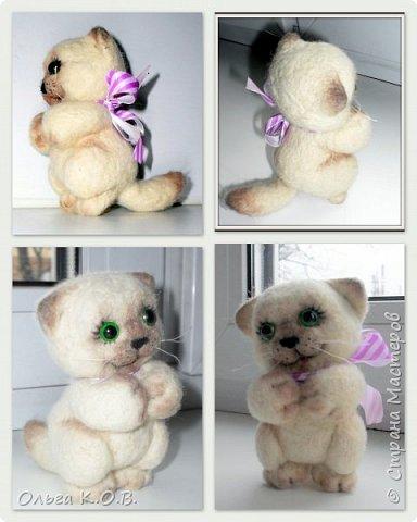 Котеночек фото 4
