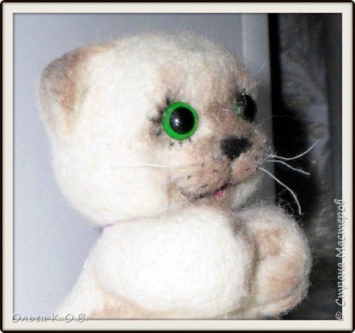 Котеночек фото 3