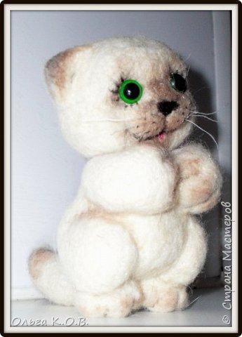 Котеночек фото 7