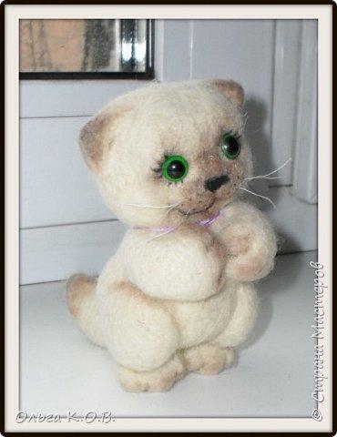 Котеночек фото 1