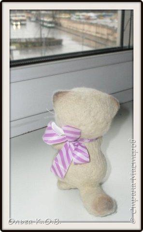 Котеночек фото 8