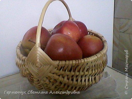 Эту  корзинку  из лозы  сплела    мне   знакомая Людмила.Очень  красивая  и нужная вещь.Большое спасибо, Людмила!!! фото 1