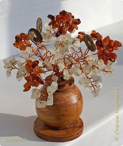 Денежное дерево выросло из горшочка с золотом. фото 2