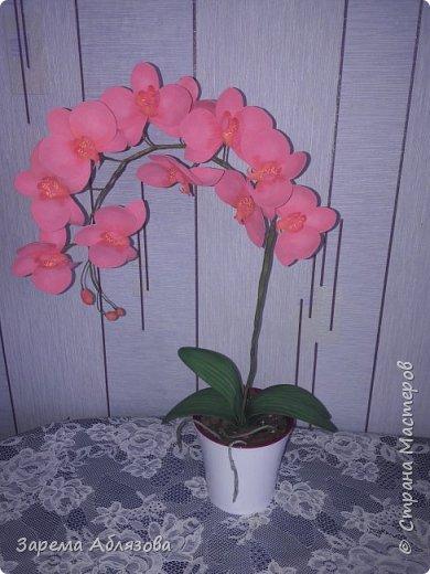 Доброго времени суток,дорогие мастера и мастерицы! У нас уже 23:25,а я доделала свою вторую орхидейку ,и бегом к Вам). Долго,очень долго,более года не решалась я на создание орхидеи из фоамирана. Мне было страшно,что не справлюсь. Но недавно я сделала первую орхидейку и сразу же приступила к изготовлению следующей. Розовая орхидея-это моё первое дитя)))) фото 1