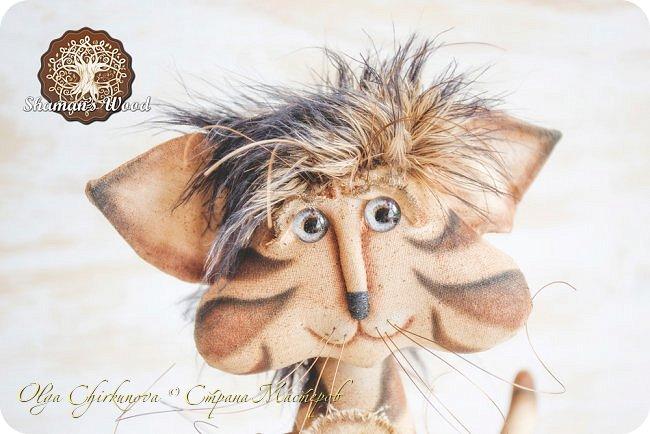 Кот Камышкинс и мышонок Грибочкинс живут в лесу Шамана на Вересковых полях. Они братья, самые настоящие! Однажды мышонка подбросили к дому доброй тетушки Кошки Ниннат и она вырастила прекрасного мыша! Камышкинс занимаемся волшебным Камышовым садом, а Грибочкинс изучает грибы своего леса. фото 3