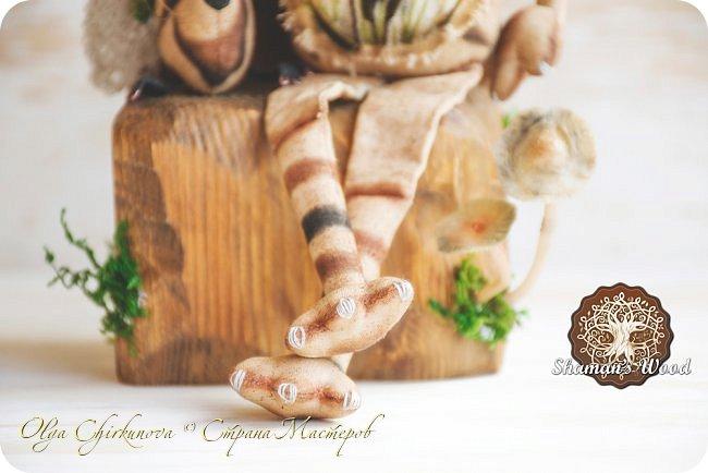 Кот Камышкинс и мышонок Грибочкинс живут в лесу Шамана на Вересковых полях. Они братья, самые настоящие! Однажды мышонка подбросили к дому доброй тетушки Кошки Ниннат и она вырастила прекрасного мыша! Камышкинс занимаемся волшебным Камышовым садом, а Грибочкинс изучает грибы своего леса. фото 5