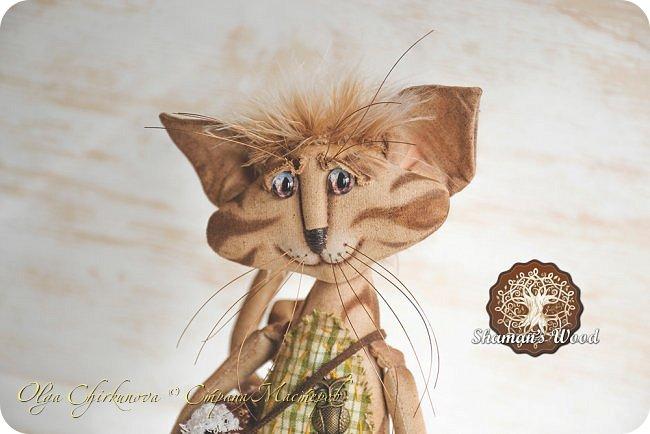 Кот Камышкинс и мышонок Грибочкинс живут в лесу Шамана на Вересковых полях. Они братья, самые настоящие! Однажды мышонка подбросили к дому доброй тетушки Кошки Ниннат и она вырастила прекрасного мыша! Камышкинс занимаемся волшебным Камышовым садом, а Грибочкинс изучает грибы своего леса. фото 12