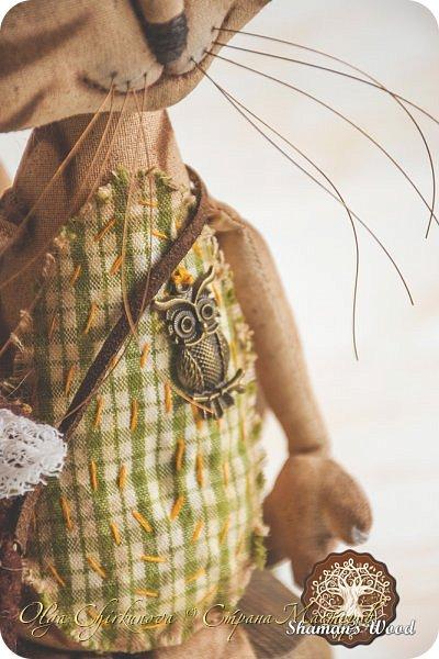 Кот Камышкинс и мышонок Грибочкинс живут в лесу Шамана на Вересковых полях. Они братья, самые настоящие! Однажды мышонка подбросили к дому доброй тетушки Кошки Ниннат и она вырастила прекрасного мыша! Камышкинс занимаемся волшебным Камышовым садом, а Грибочкинс изучает грибы своего леса. фото 13