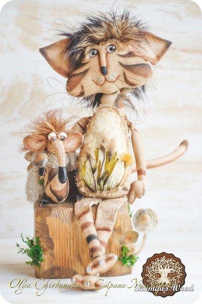 Кот Камышкинс и мышонок Грибочкинс живут в лесу Шамана на Вересковых полях. Они братья, самые настоящие! Однажды мышонка подбросили к дому доброй тетушки Кошки Ниннат и она вырастила прекрасного мыша! Камышкинс занимаемся волшебным Камышовым садом, а Грибочкинс изучает грибы своего леса. фото 1