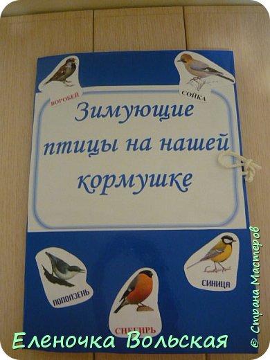 """Лепбук """"Зимующие птицы на нашей кормушке"""" фото 1"""