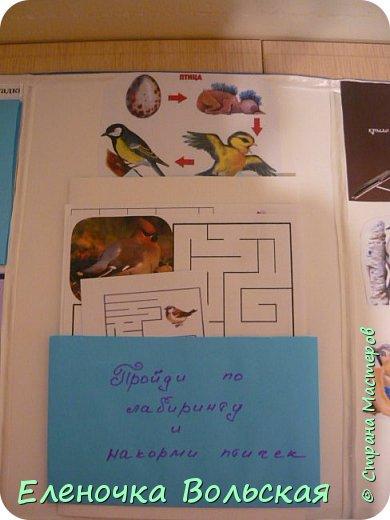 """Лепбук """"Зимующие птицы на нашей кормушке"""" фото 3"""