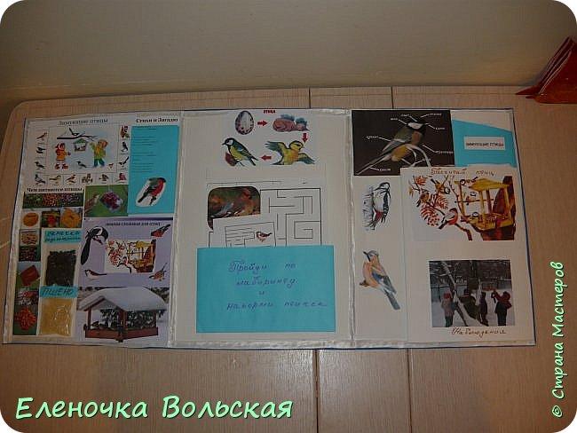 """Лепбук """"Зимующие птицы на нашей кормушке"""" фото 5"""