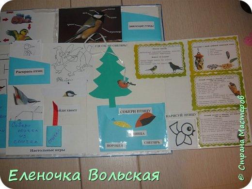 """Лепбук """"Зимующие птицы на нашей кормушке"""" фото 8"""