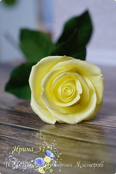 Здравствуйте!  Я как всегда  с фоамирановыми цветами!  Приглашаю к просмотру.  Букет из 15 полноразмерных роз.  фото 8