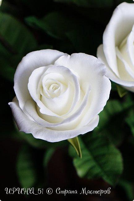 Здравствуйте!  Я как всегда  с фоамирановыми цветами!  Приглашаю к просмотру.  Букет из 15 полноразмерных роз.  фото 28