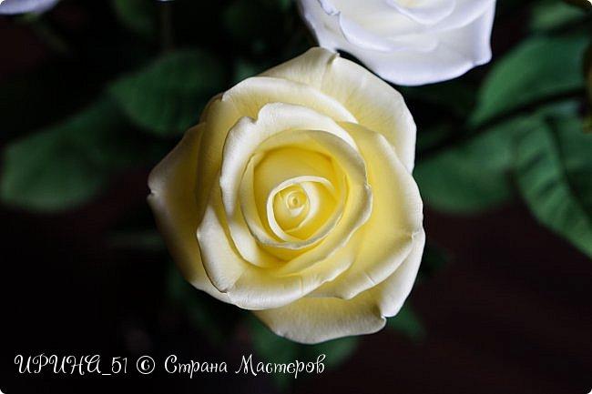 Здравствуйте!  Я как всегда  с фоамирановыми цветами!  Приглашаю к просмотру.  Букет из 15 полноразмерных роз.  фото 30