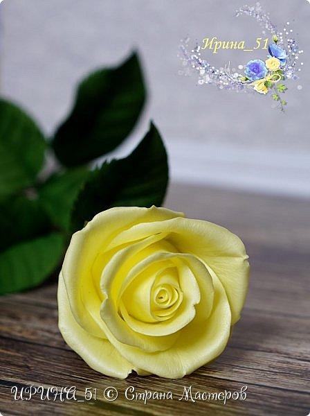 Здравствуйте!  Я как всегда  с фоамирановыми цветами!  Приглашаю к просмотру.  Букет из 15 полноразмерных роз.  фото 9