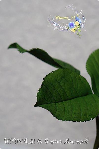 Здравствуйте!  Я как всегда  с фоамирановыми цветами!  Приглашаю к просмотру.  Букет из 15 полноразмерных роз.  фото 4